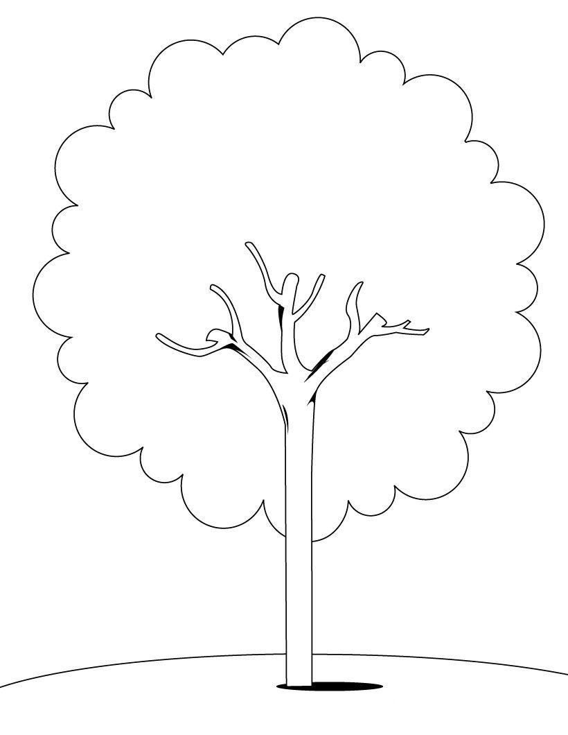 Tree Templatetree Coloring Pages 09 5290 Kb